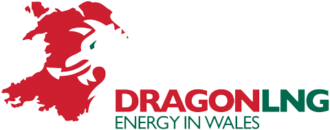 Radiating Heat Shield For Dragon LNG